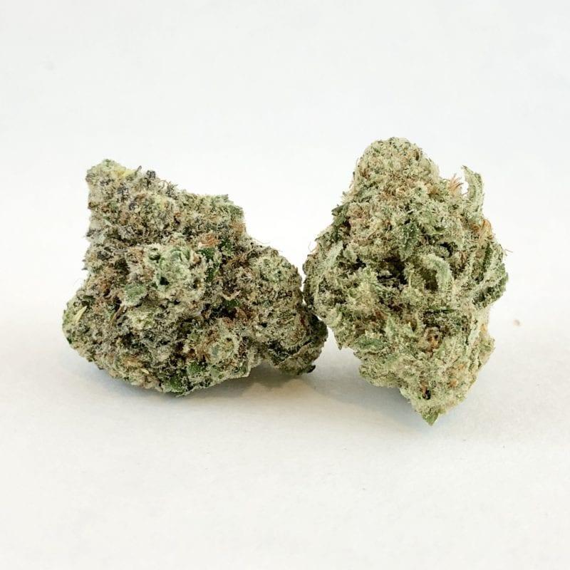 lavender-kush-strain