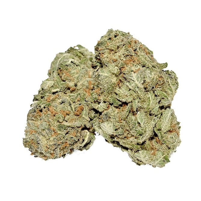 Buy weed cannabis Girl Scout Cookies Strain San Diego delivery
