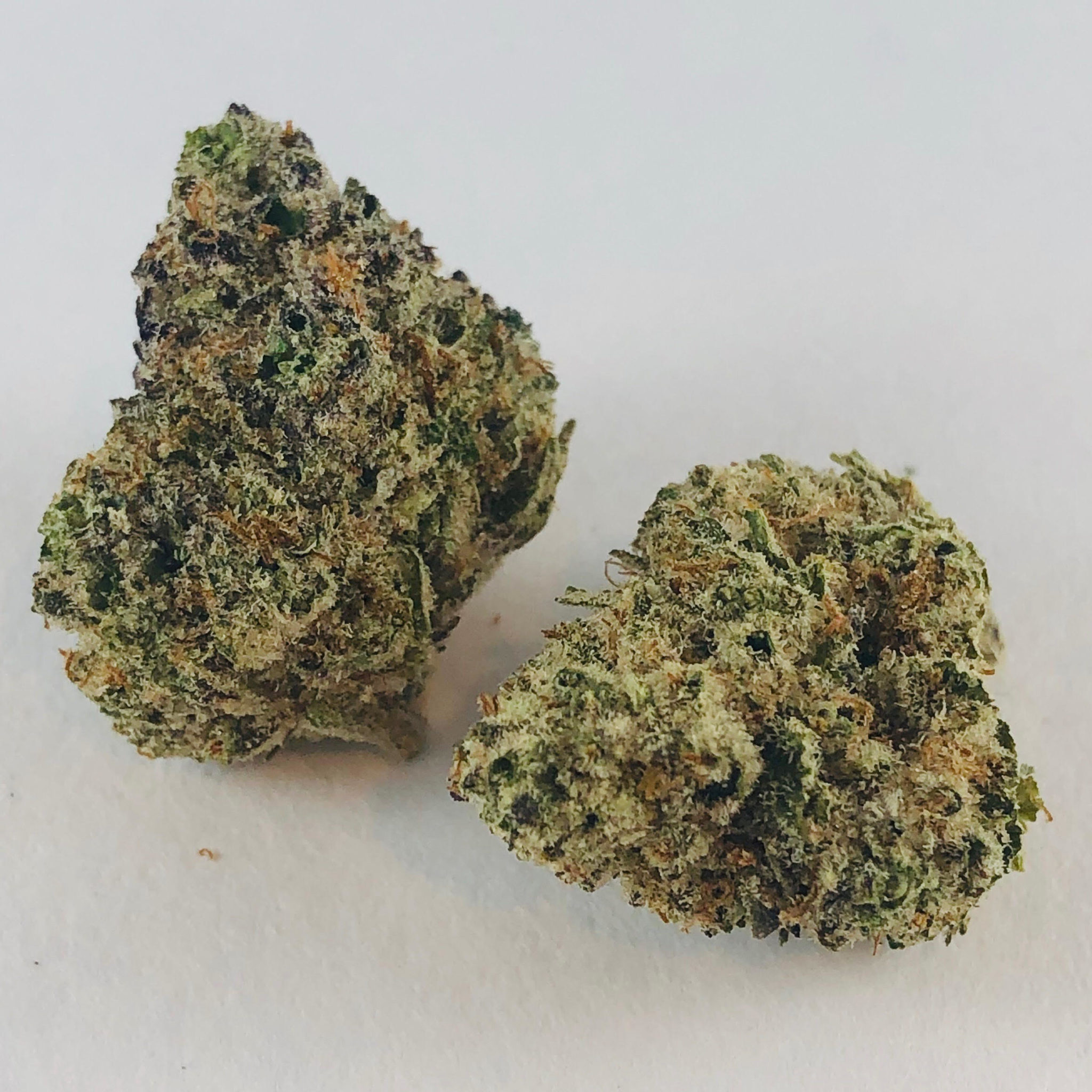 Cereal Milk | Hybrid | Exclusive Reserve - The Loud Line