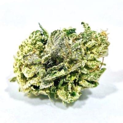Animal Glue Strain Girl Scout Cookies Near Me Cannabis Marijuana Weed Delivery Dispensary San Diego